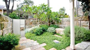 bookabin-front-garden-native-plants-australia