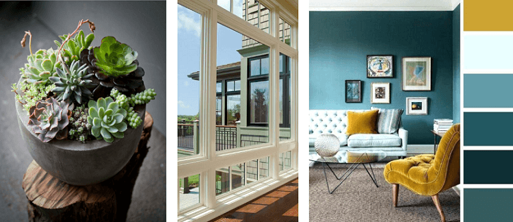 three images. Small cactus in a pot. White window frame. Lounge with blue walls and a gold chair.