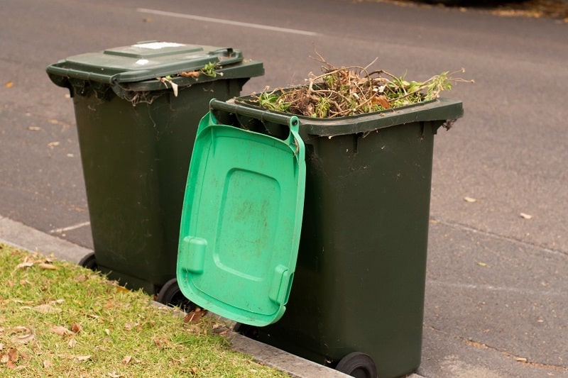 Green Bin filled with tree parts